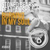 Stoned Bears Feat. AWSHRA - Burning In My Soul (Original Mix)