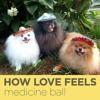 How Love Feels