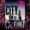 Garth Risk Hallberg reads City On Fire - 'In New York'