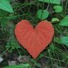 Sri Argala Stotram - Show Me Love
