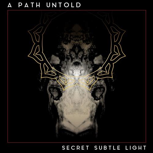 {{SECRET SUBTLE LIGHT LP}} Out NOW on Aligning Minds Recordings