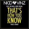 Nico & Vinz - That's How You Know (Paxel Remix) [Dancing Pineapple Exclusive]