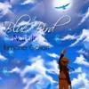 Blue Bird (Ikimono Gakari/ Naruto OP) COVER