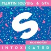 Martin Solveig & GTA Vs Skepta - Thats Not Intoxicated(N.C.G bootleg)