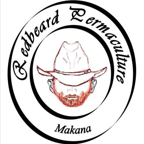 Episode 19 Ed Gaybba of Redbeard Permaculture in South Africa