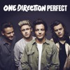 Perfect - One Direction (Cover-2)