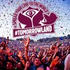 Arisen Flame - Fireball vs. Ellie Goulding - Outside (Armin van Buuren Mashup)@ Tomorrowland!!