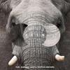 Flin - Elephant (Deep & Tropical Mixtape)