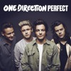 One Direction - Perfect (Matt DeFreitas Cover) (Alexamin Remix)
