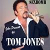 Tom Jones - Sex Bomb (SU Remix)