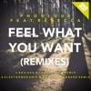 Phonique Feat. Rebecca - Feel What You Want - AKA AKA & Thalstroem Remix