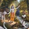 Hari Haraya Namah Krishna Nityanandi Dasi 01 2015 Krishna Bengali Bhajan Nitai1730