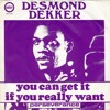 Desmond Dekker - You Can Get It If You Really Want (Hiphoppapotamus Remix)