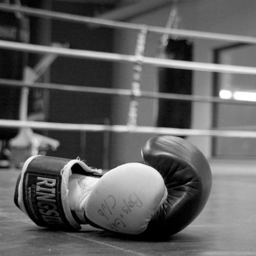 Ливенские боксеры привезли домой «Золотые перчатки»