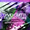 David Guetta - The World Is Mine (DJ Pitchugin Remix)
