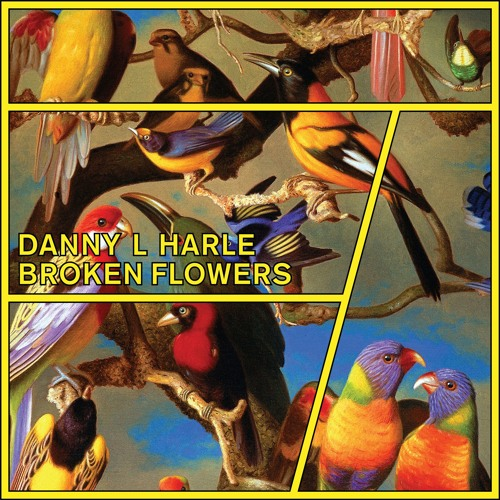 Danny L Harle - Broken Flowers (Extended Mix)