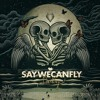 SayWeCanFly - Driftwood Heart