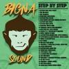 Dancehall mix - Step by step (Mix By Bigna Sound)