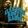Electric Roots Radio [DEMO]