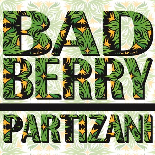 Bad Berry - Partizani (Original Mix)