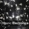 Organic Electronica