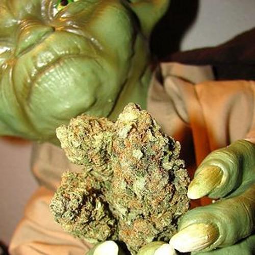 Если курить марихуану какие дети родятся в крыму изъяли коноплю