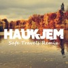 Peter And The Wolf - Safe Travels (Haukjem Remix)