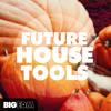 Big EDM - Future House Tools [Construction Kits, Massive Presets, Bass Loops] Beatport #4 !