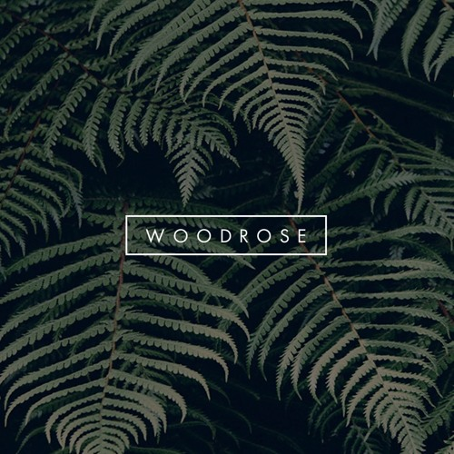 The Woodrose Demos