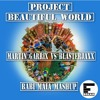 Martin Garrix vs Blasterjaxx - Project Beautiful World - Babi Maia Mashup (free Download)