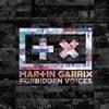 Martin Garrix vs. Galantis vs. Maroon 5 - Runaway vs. Forbidden Voices vs. Sugar Mashup
