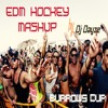 Pop, Top 40 & EDM Mashups (Exclusives mashup of New & Oldies Song) / Hockey Songs