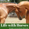 017 Life With Horses - Pilates for showjumpers and the need for coaches
