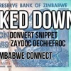Looked Down Donvert Snippet & Zaydoc Dechiefroc