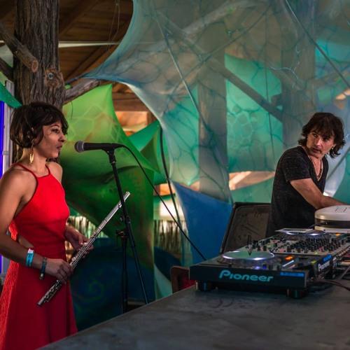Live at Ozora festival O8-2015