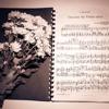 Bach Busoni Chaconne in D minor BWV 1004