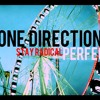 One Direction - Perfect (Stay Radical Cover)