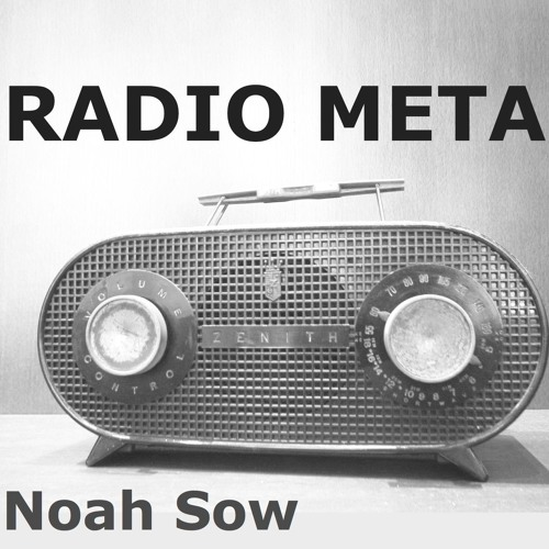 Noah Sow: RADIO META (Teaser)