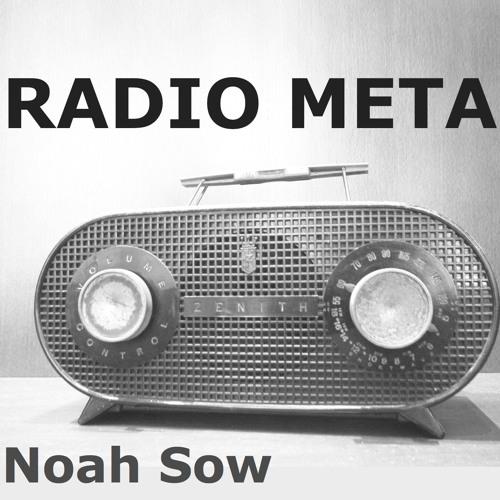 Radio Chauvi - Sendeschluss - Hörprobe (Teil des Hörspiels RADIO META von Noah Sow)