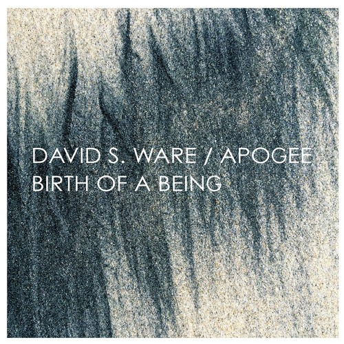 DAVID S. WARE / Apogee - Birth Of A Being (Expanded) [series of album excerpts]