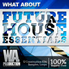 Future House Essentials [2,5 GB of Construction Kits, Presets, Samples, Ableton Template, Tutorials]
