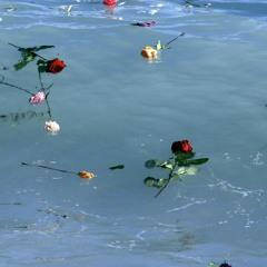 Amore Mio Dammi La Mano (Canzone dei Migranti Morti in Mare)