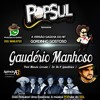 (nova Versão) Gaudério Manhoso - POPSUL - Part. Márcio Correia