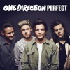 One Direction - Perfect - Made in the A.M. cover by Aryann  Zubair