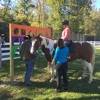 Our Lady Of Peace & Equine Therapy Program