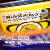 Dj Paleo 90s electronic vol 1