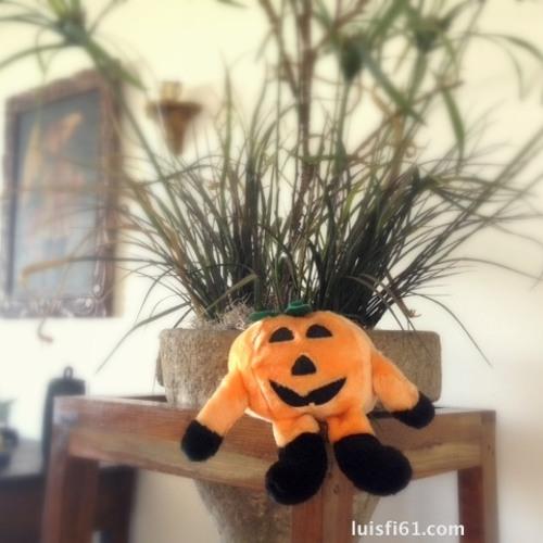 1508, ¡Listos para celebrar el Halloween!