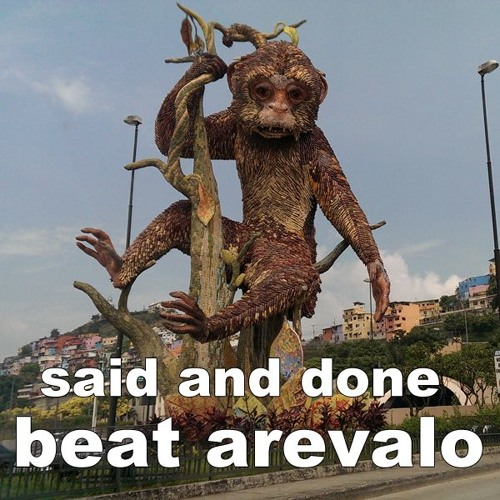 Beat Arevalo - Said And Done