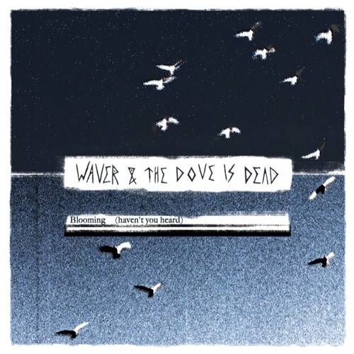 Waver & The Dove is Dead - Blooming (Haven't You Heard)