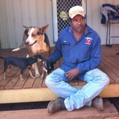 Call for action following fatal dog attack in remote Kimberley community
